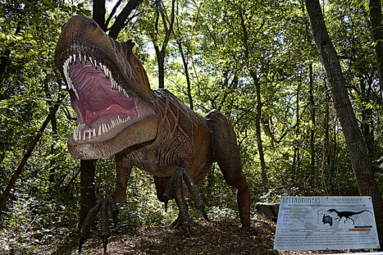 A life-like Tyrannosaurus Rex at Dinosaurs Live!, at the Heard Museum in McKinney, Texas. (Photo by Russ/flickr)