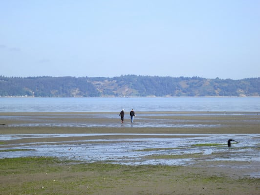 Strolling at low tide along the shoreline of Dash Point State Park near Tacoma, Washington. (Photo by Ruth Hartnup/flickr)