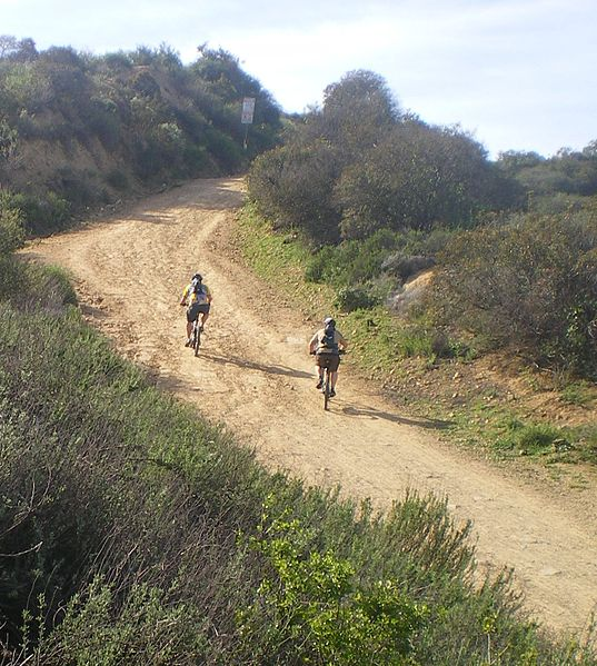 Mountain bikers on the trails in Marvin Braude Mullholland Gateway Park. (Photo by Wikimedia)