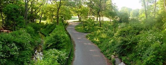 A path in Brooklyn's Prospect Park. (© Garry R. Osgood/Wikimedia)