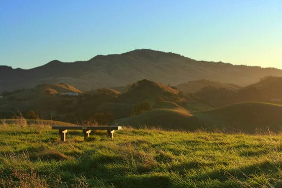 Dawn in the Mount Diablo foothills. (Photo by John Morgan/flickr)
