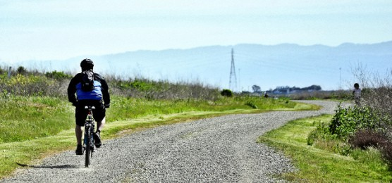 A cyclist on the trails in Hayward Regional Shoreline, Calif. (Photo by japes18/flickr)