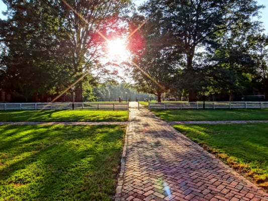 The campus of the College of William and Mary in Williamsburg, Va. (Photo by Oleg/flickr)