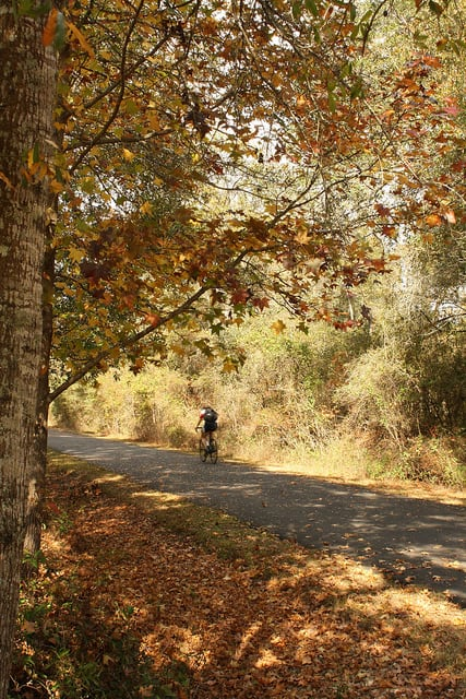 Cyclist on the St. Marks Trail in Tallahassee, Fla. (Photo by Capital City to the Sea Trail/flickr)
