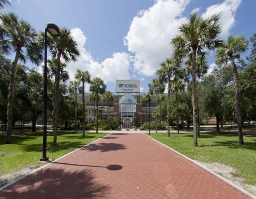 The Gator Walk to Ben Hill Griffin Stadium. (Photo by Gainesville Apts/flickr)