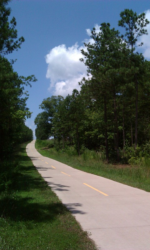A stretch of the Silver Comet Trail, taken in 2012. (Photo by atlbike/flickr)