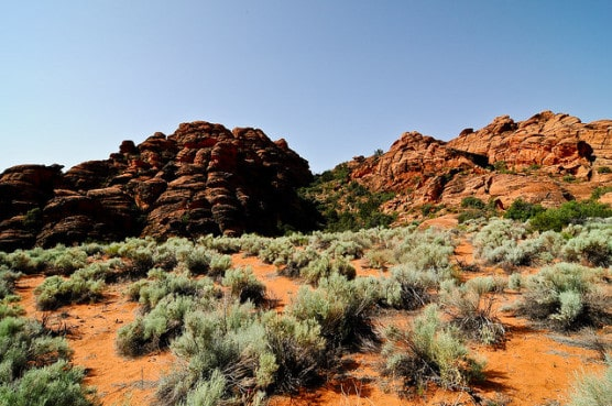 A view of Snow Canyon State Park near St. George, Utah. (Photo by John Buie/flickr)