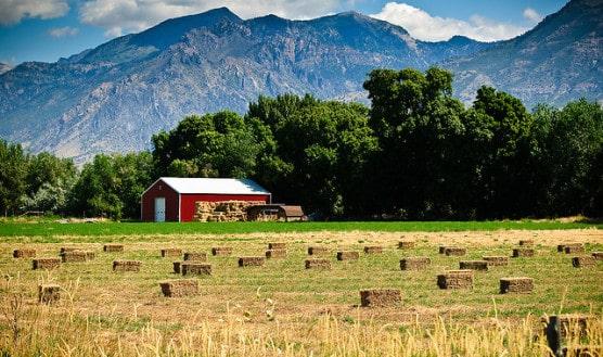 A pastoral scene in American Fork, Utah. (Photo by Don LaVange/flickr)