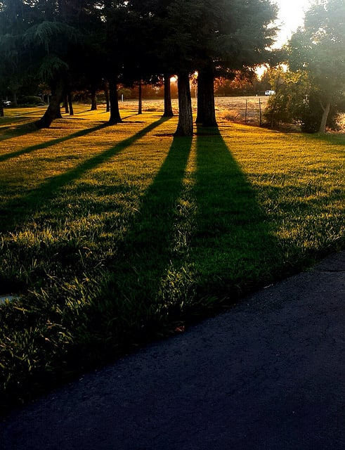 Late afternoon in Elk Grove, California, in September 2014. (Photo by Tiocfaidh/flickr)