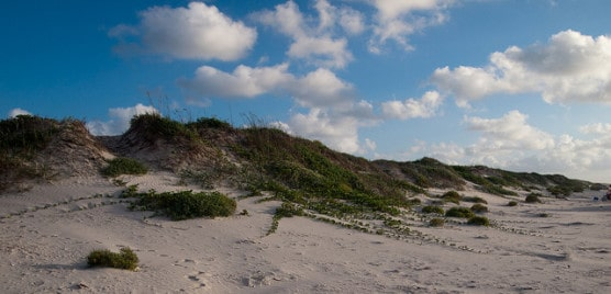 Sand dunes on Padre Island National Seashore, Texas. (Photo by monad68/flickr)