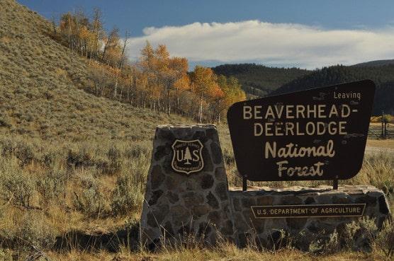 Photo by U.S. Forest Service Northern Region/flickr