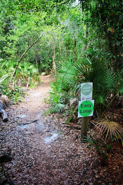 The River Loop trail in Alafia River State Park, Florida. (Photo by Global Reactions/flickr)