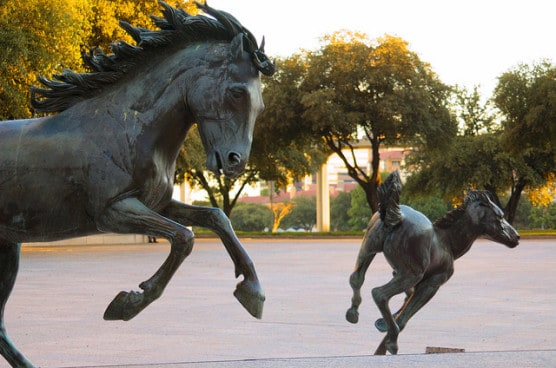 The Mustangs at Las Colinas, photographed in October 2012. (Photo by Bill Chance/flickr)