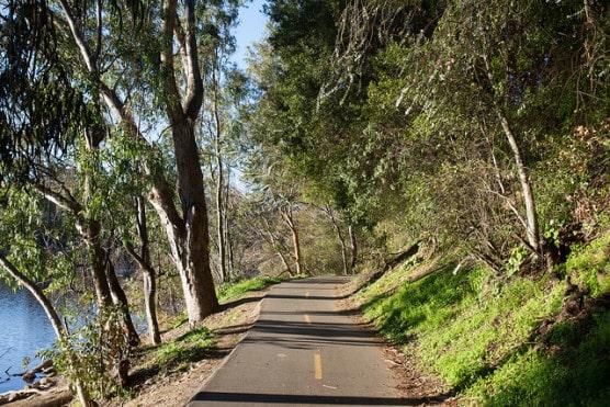 The road along the lakeshore in Vasona Lake County Park near Los Gatos, California. (Photo by Eugene Kim/flickr)