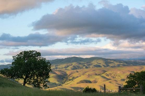 Santa Teresa County Park near San Jose, California. (Photo by Don DeBold/flickr)