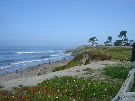Scenery along West Cliff Drive in Santa Cruz, Calif. (Photo by Tané Tachyon/flickr)