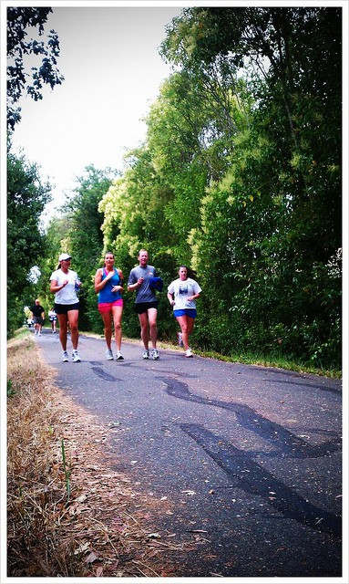 Runners on the Santa Rosa Creek Trail. (Photo by Tim Cigelske/flickr)