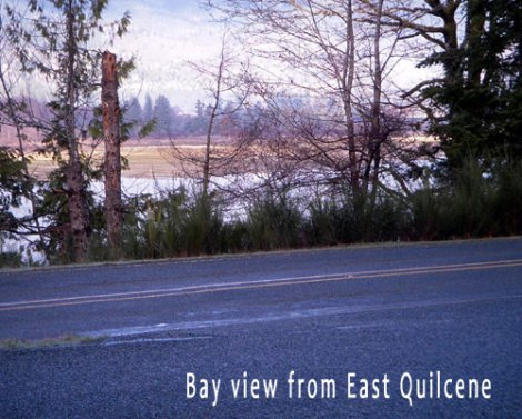 12-east-quil1