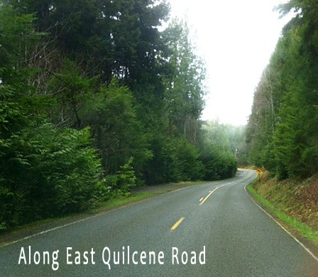 east-quil-road1 (1)