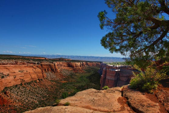 Scene inside Colorado National Monument. (Photo by Rennett Stowe/flickr)