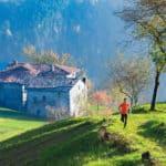 10 Half Marathons in Italy You'll Love Running Thumbnail